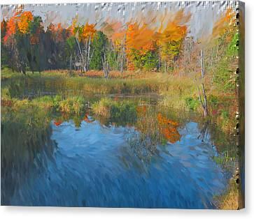 The Pond Next Door Canvas Print by Mario Carini