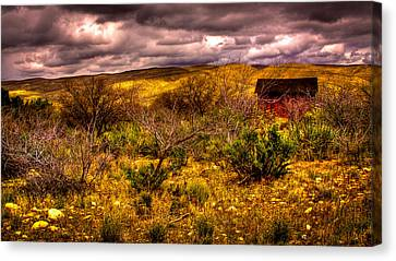 The Red Shed At Red Rock Canyon Canvas Print by David Patterson