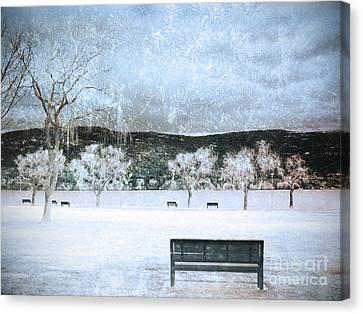 The Snow Storm Canvas Print by Tara Turner