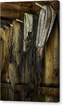 The Tack Room Wall Canvas Print by Lynn Palmer