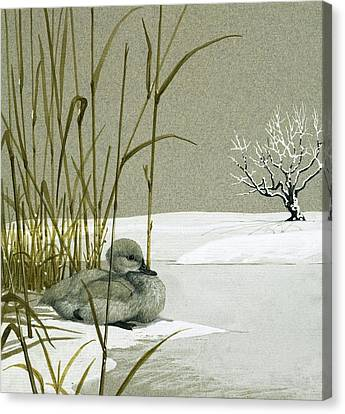The Ugly Duckling Canvas Print by English School