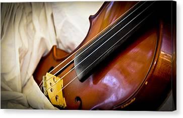 The Violin Canvas Print by Carolyn Marshall