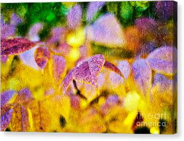The Warmth Of Autumn Glow Abstract Canvas Print by Andee Design