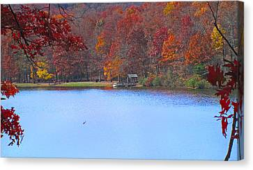 The Watershed Canvas Print by Lynn Bauer