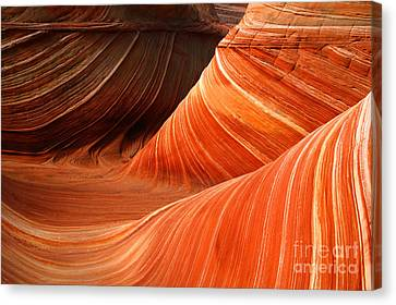 The Wave Canvas Print by Keith Kapple