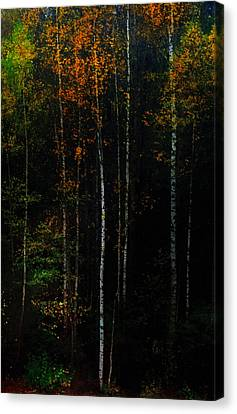 The Way To Glow From The Darkness Canvas Print by Jenny Rainbow