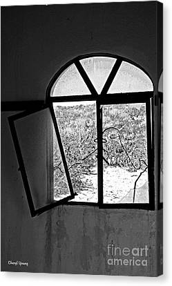 The Window Canvas Print by Cheryl Young