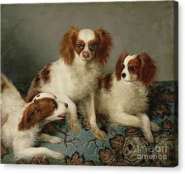 Three Cavalier King Charles Spaniels On A Rug Canvas Print by English School