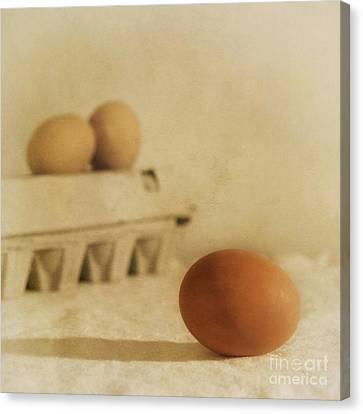 Three Eggs And A Egg Box Canvas Print by Priska Wettstein