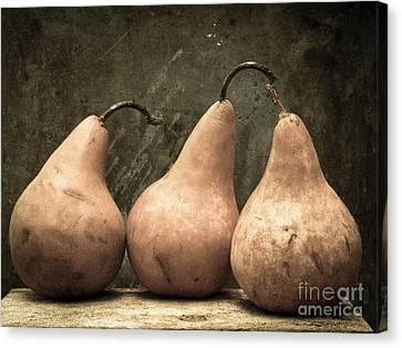 Three Pear Canvas Print by Edward Fielding