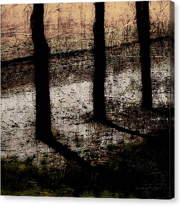 Three Tree Trunks Canvas Print by Carol Leigh
