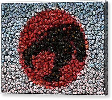 Thundercats Bottle Cap Mosaic Canvas Print by Paul Van Scott