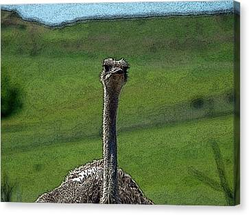 Ticket Please Canvas Print by Teri Schuster