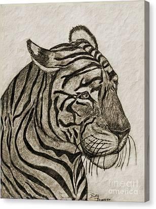 Tiger Iv Canvas Print by Debbie Portwood