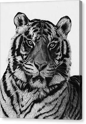 Tiger Canvas Print by Jyvonne Inman