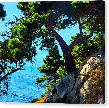 Timber Cove In Sonoma Coast Canvas Print by Russ Harris
