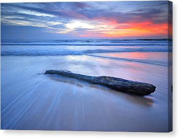 Timber On The Beach Canvas Print by Teerapat Pattanasoponpong