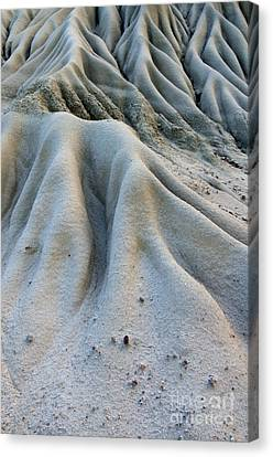 Timelines Canvas Print by Bob Christopher