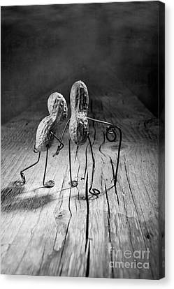 Together 06 Canvas Print by Nailia Schwarz