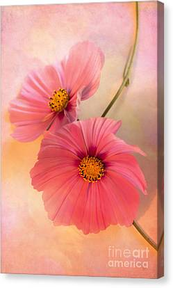 Together Canvas Print by Jan Bickerton