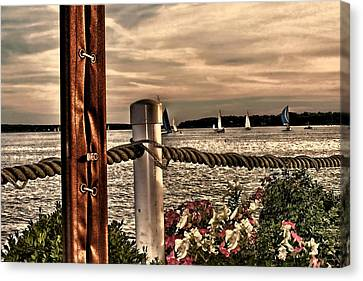Top Of The Bay Canvas Print by Tom Prendergast