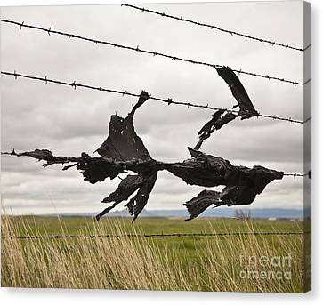 Torn Bags On A Barbed Wire Fence Canvas Print by Paul Edmondson