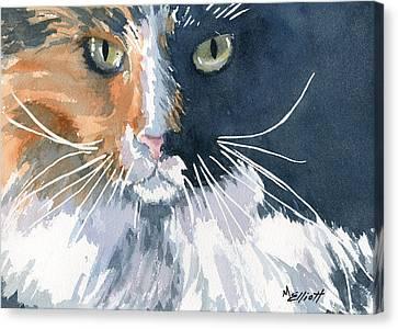 Tortie Canvas Print by Marsha Elliott
