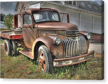 Tough Old Workhorse Canvas Print by J Laughlin