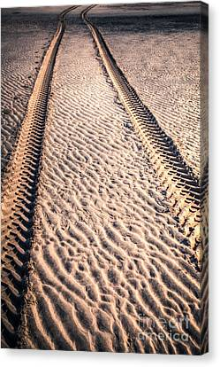 Tracks In The Sand Canvas Print by Adrian Evans