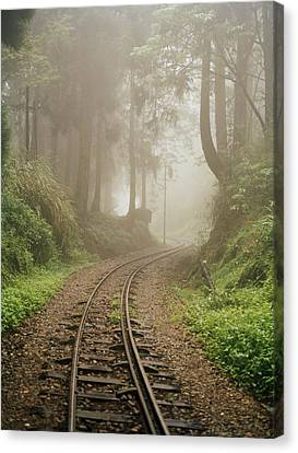 Train Tracks Found On The Forest Floor Canvas Print by Justin Guariglia