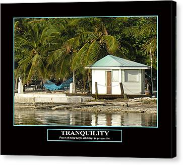 Tranquility Canvas Print by Kevin Brant
