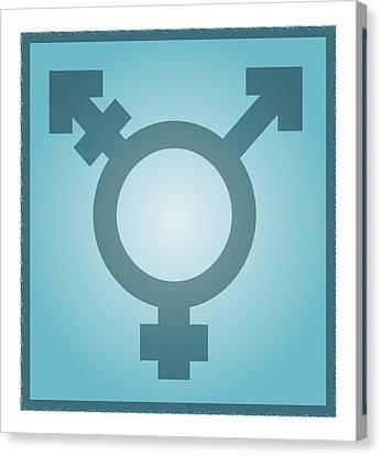 Transgender Symbol, Artwork Canvas Print by Stephen Wood