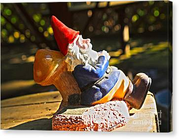 Travel Gnome Sunning Canvas Print by Cheryl Young