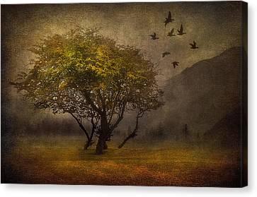 Tree And Birds Canvas Print by Svetlana Sewell