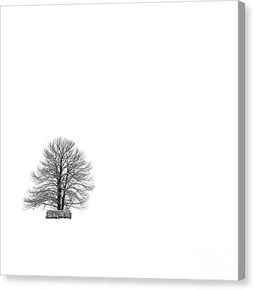 Tree Isolated Under The Snow In The Middle Field In Winter. Canvas Print by Bernard Jaubert