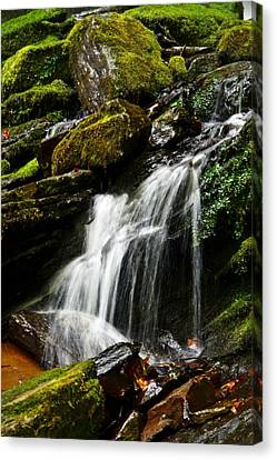 Trickle Trickle Canvas Print by Love Photography By Mandy