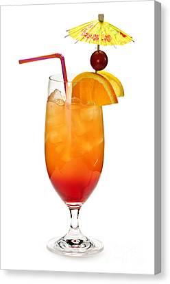 Tropical Cocktail Canvas Print by Elena Elisseeva