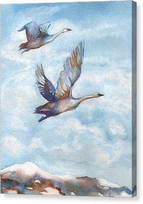 Trumpeter Swans Canvas Print by Peggy Wilson