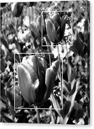 Flowers Canvas Print featuring the photograph Tulips by Roberto Alamino