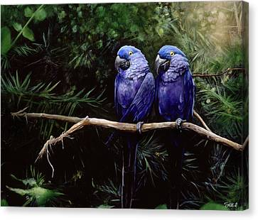 Twins Canvas Print by Steve Goad