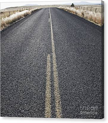 Two Lane Road Between Fenced Fields Canvas Print by Jetta Productions, Inc