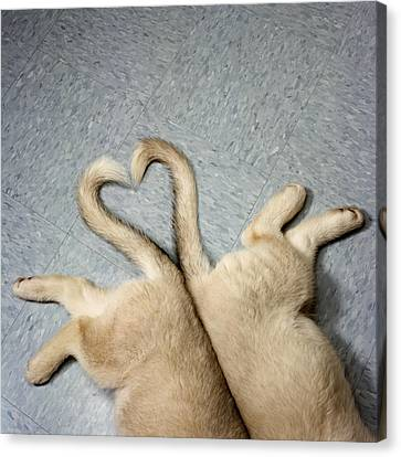 Two Puppy Tails In Heart Shape Canvas Print by GK Hart/Vikki Hart