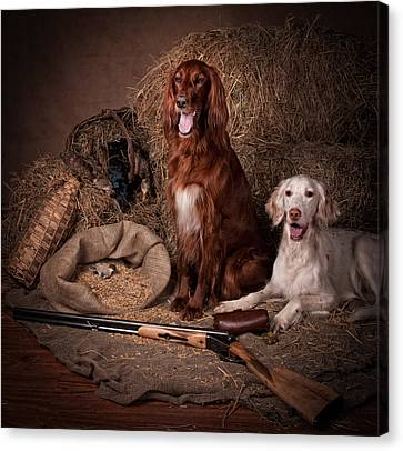 Two Setters With The Gun... Canvas Print by Tanya Kozlovsky