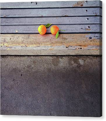 Two Tangerines Canvas Print by Sarah Palmer