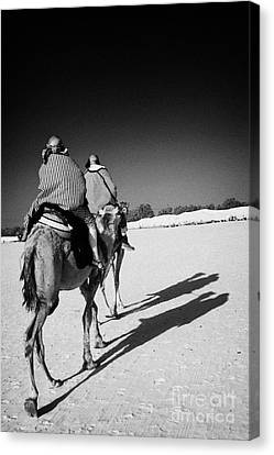 two tourists on camels return to base in the sahara desert at Douz Tunisia Canvas Print by Joe Fox