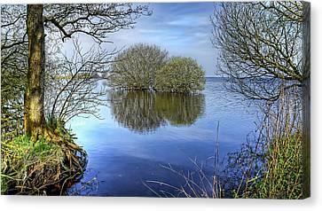 Two Watery Trees  Canvas Print by Kim Shatwell-Irishphotographer