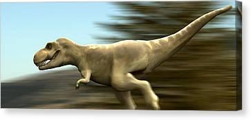 Tyrannosaurus Rex Dinosaur Running Canvas Print by Christian Darkin