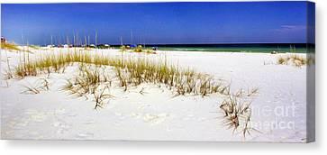 Umbrellas On The Beach Canvas Print by Judi Bagwell