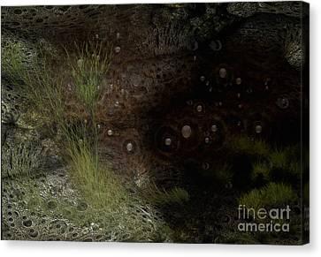 Under Sea Level Canvas Print by Jan Willem Van Swigchem