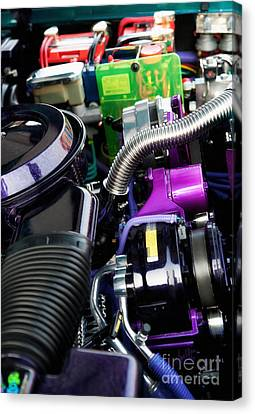 Under The Hood In Living Color Canvas Print by Anne Kitzman